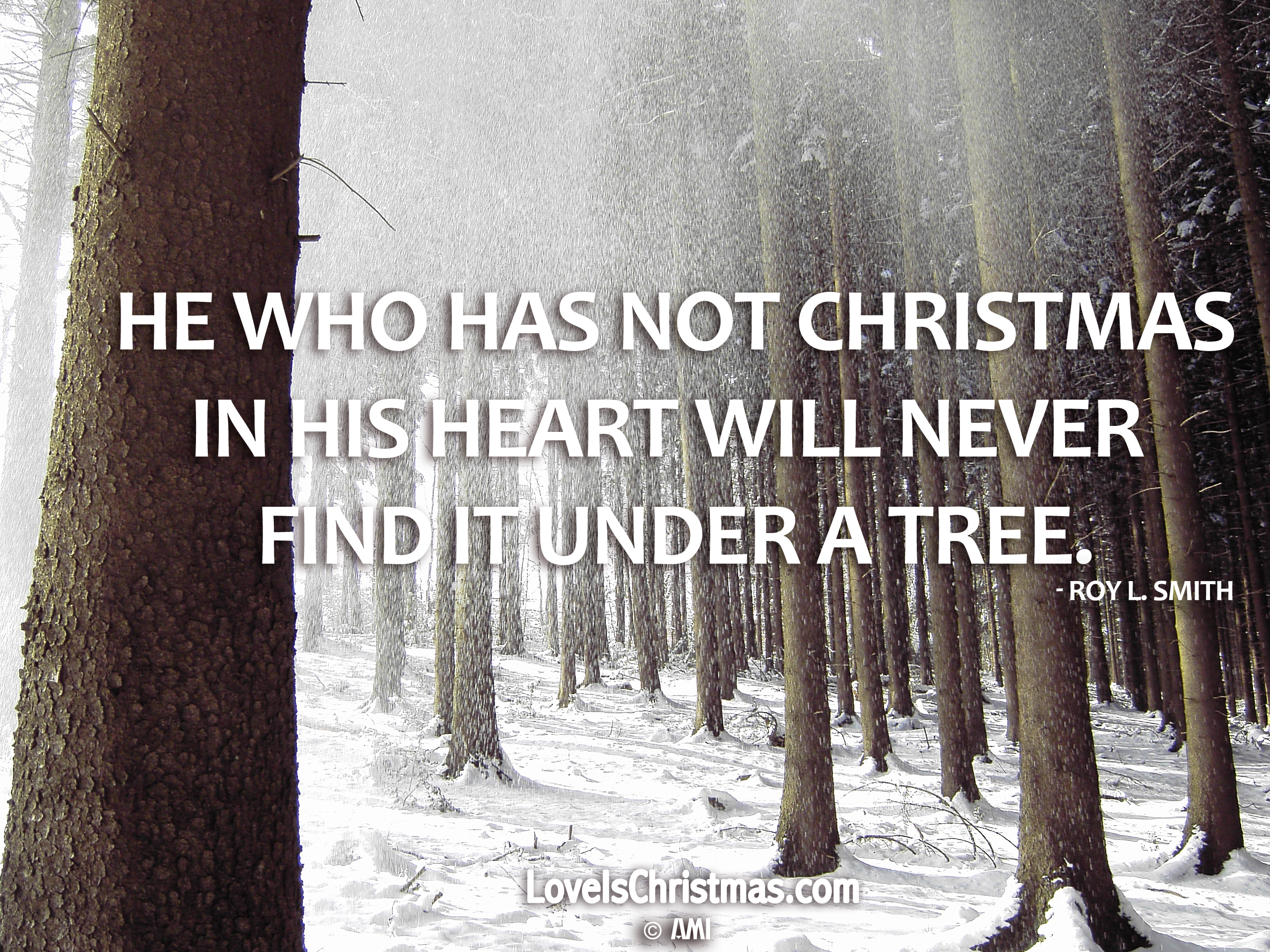 Love is Christmas – \'Christmas Tree\' | AMI