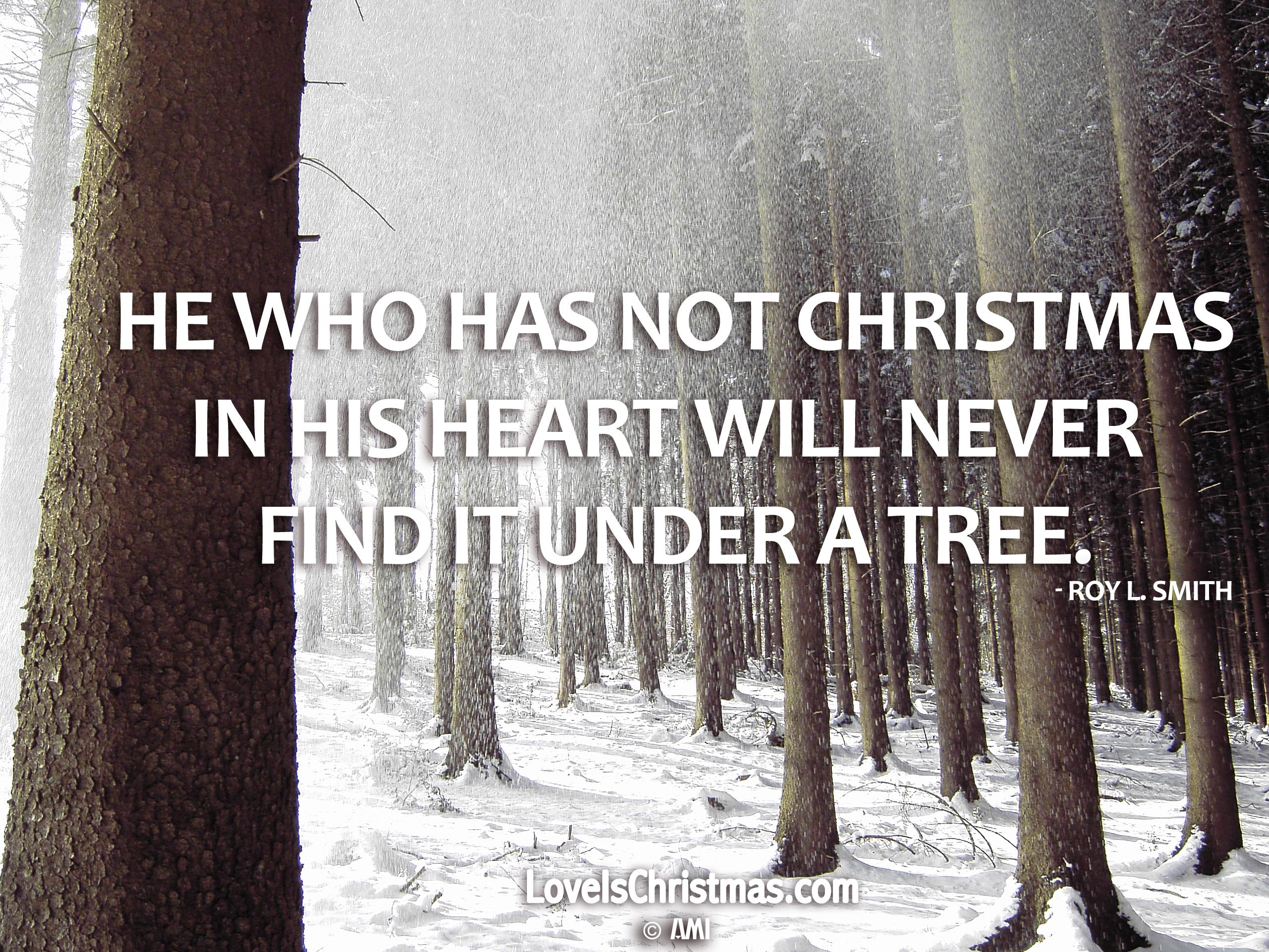 Christmas Trees AMI